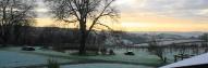 Jabajak-trees-in-winter